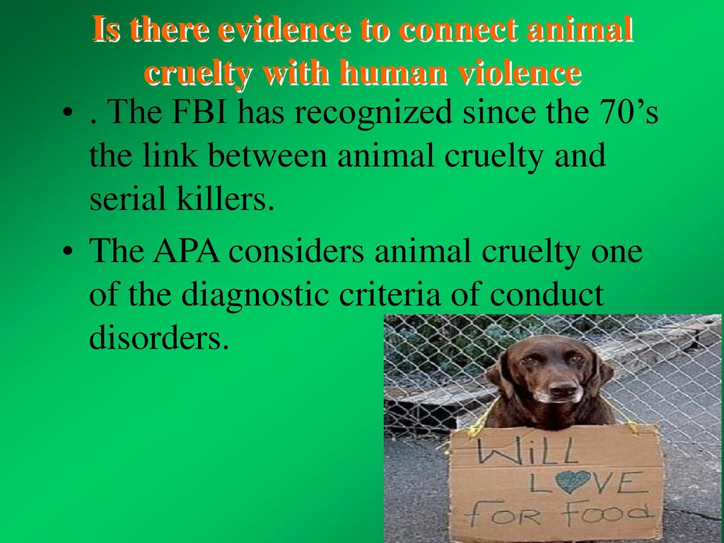 animal cruelty and human violence Executive summary animal cruelty is linked directly or indirectly with every  type of violent crime and even with most non-violent crime human beings would .