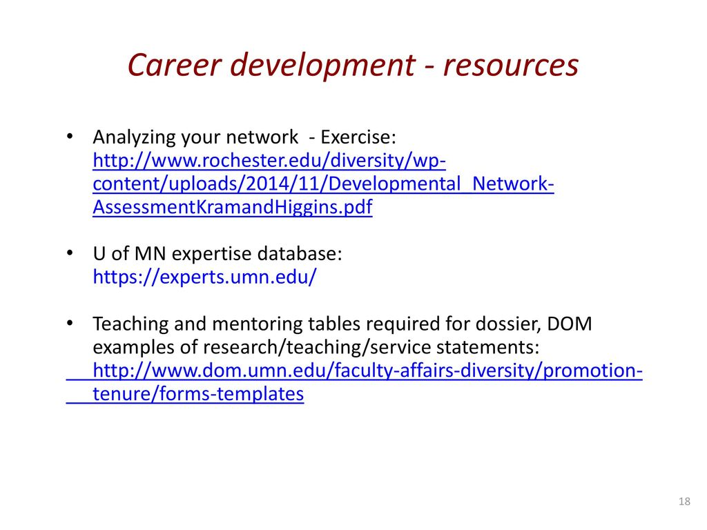 Today s agenda overview dom mentoring committees ppt for Teaching dossier template