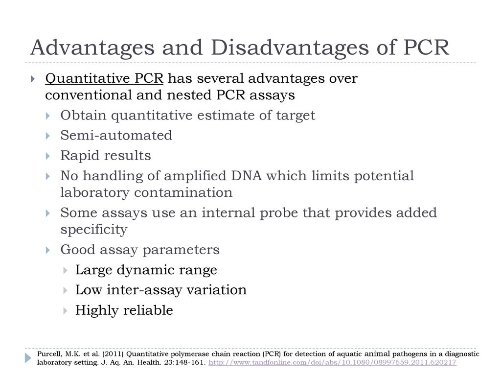 polymerase chain reaction pcr optimization parameters The polymerase chain reaction (pcr) is a commonly used molecular biology tool for amplifying dna, and various techniques for pcr optimization which have been developed by molecular.