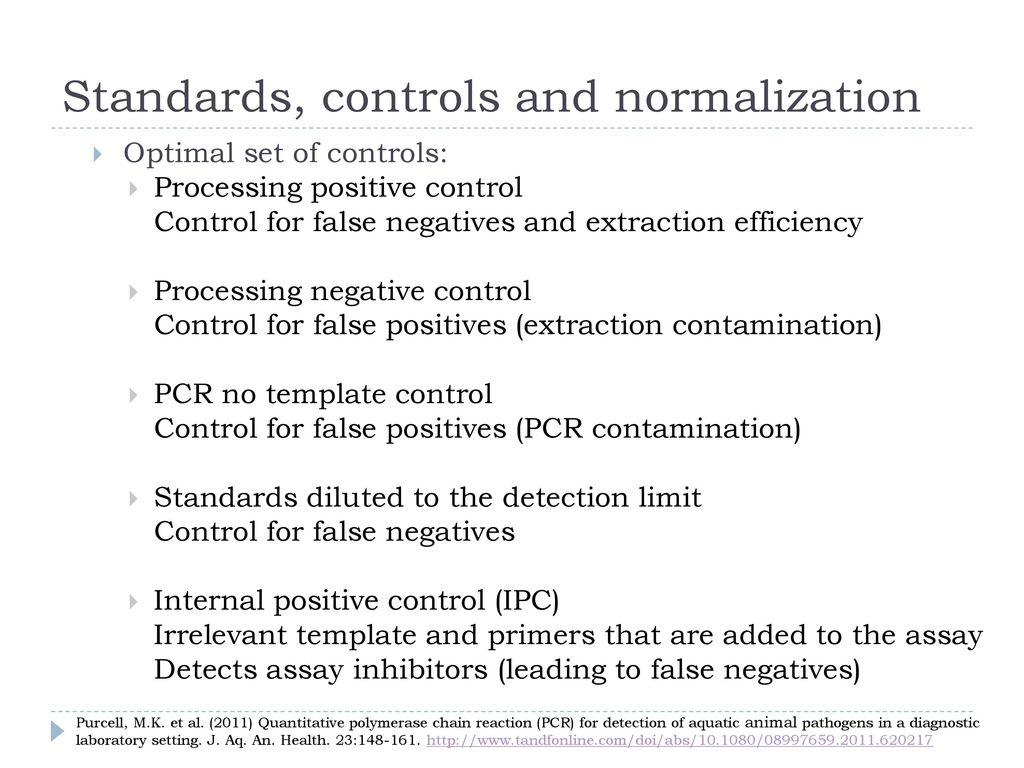 Pcr for aquatic animal health ppt download standards controls and normalization pronofoot35fo Choice Image
