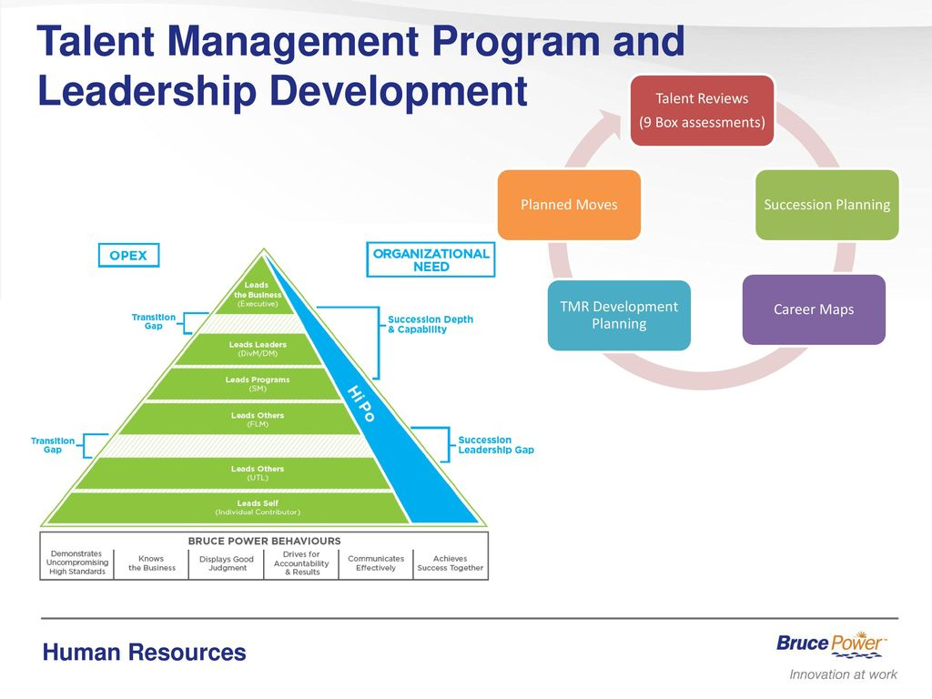 Leadership Development & Rotational Programs
