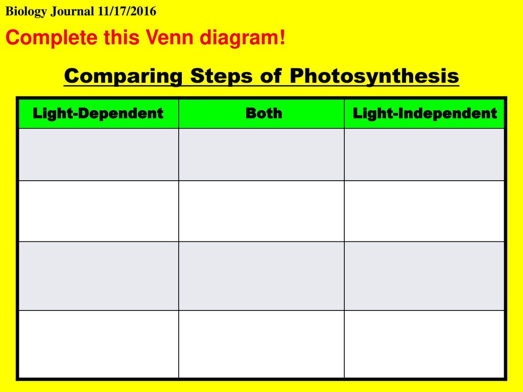 Today is your workday for your ia ppt video online download comparing steps of photosynthesis pooptronica