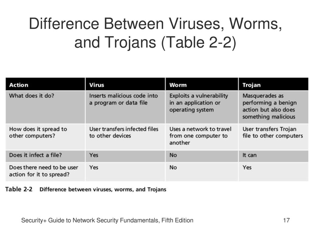 Differences Between Viruses and Bacteria