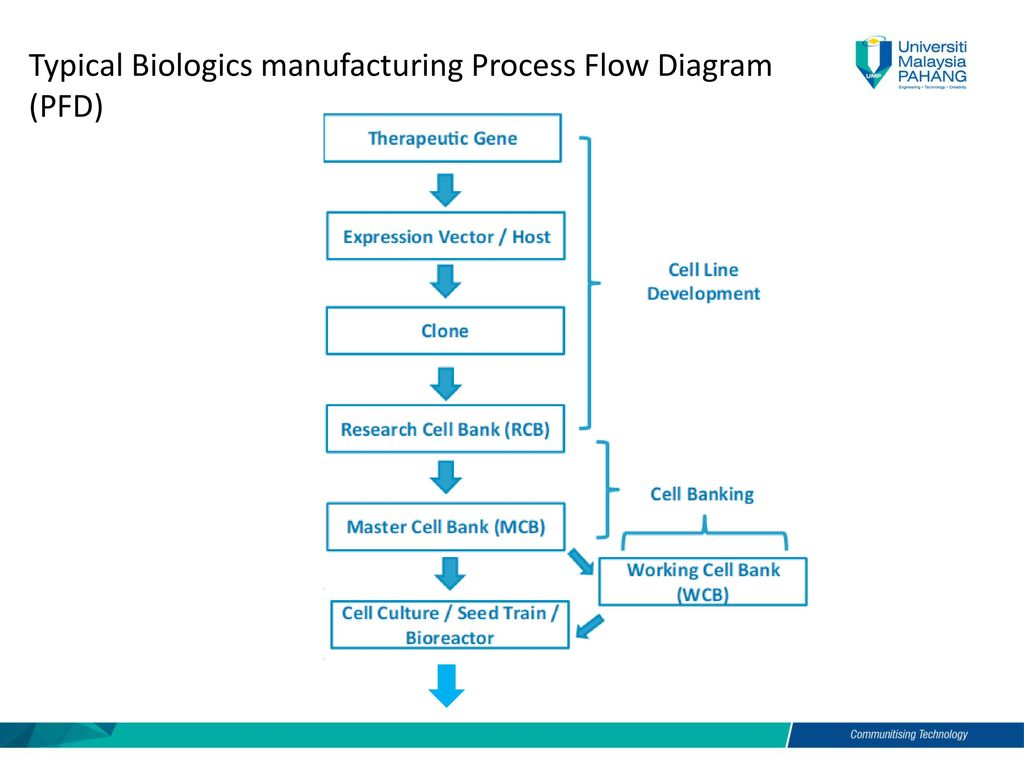 Manufacturing process flow chart passionative manufacturing process flow chart geenschuldenfo Choice Image