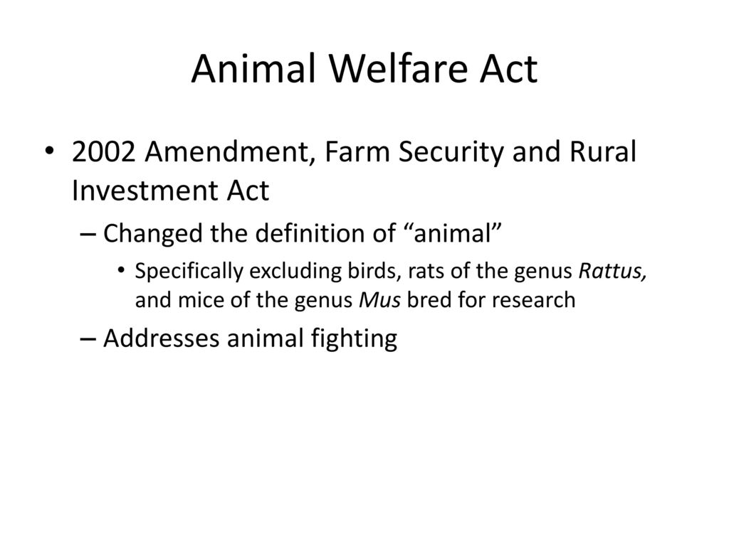 the animal welfare act of 1998 Animal welfare act 2006 the animal welfare act 2006 is the principal animal welfare legislation under the animal welfare act 2006, powers exist for secondary legislation and codes of practice to be made to promote the welfare of animals.