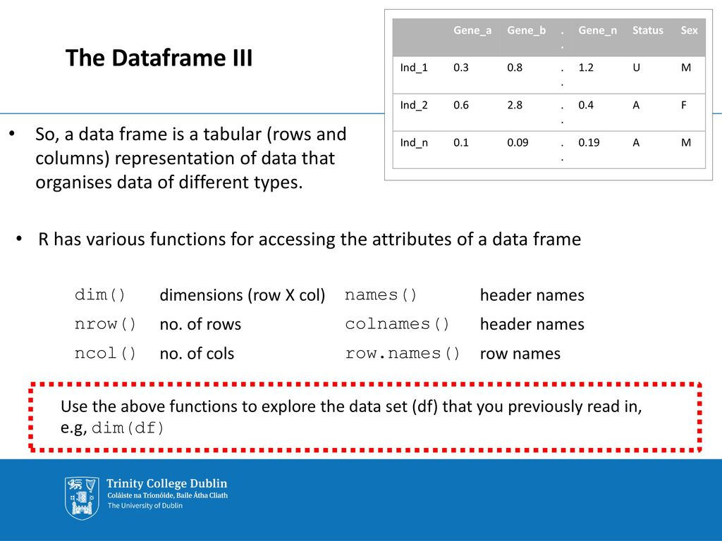 Statistical Programming Using the R Language - ppt download