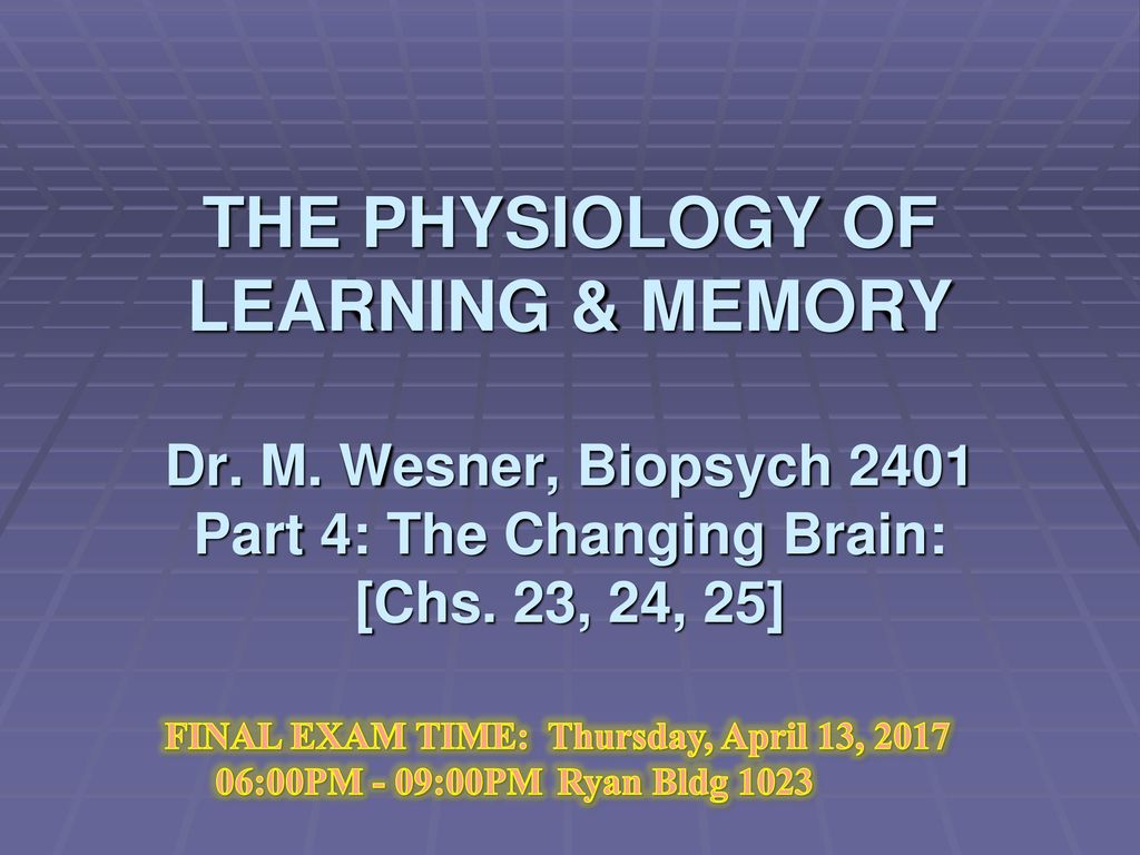 THE PHYSIOLOGY OF LEARNING & MEMORY Dr. M - ppt video online download