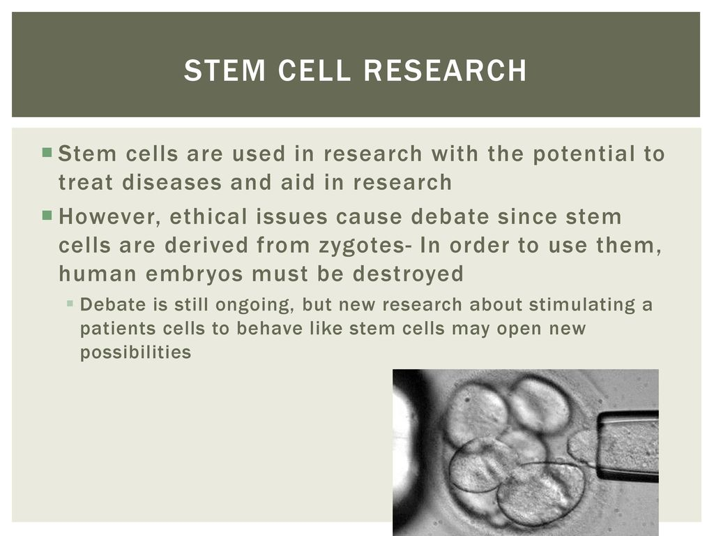 Stem cell research ethics case study