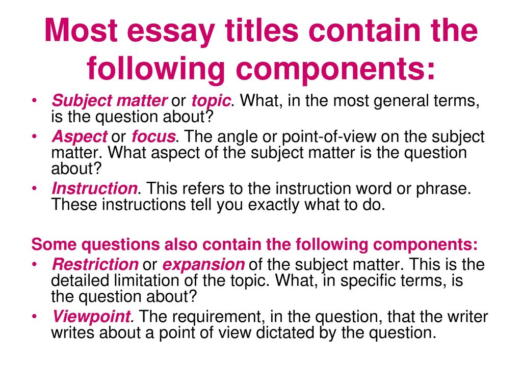 essay writing components
