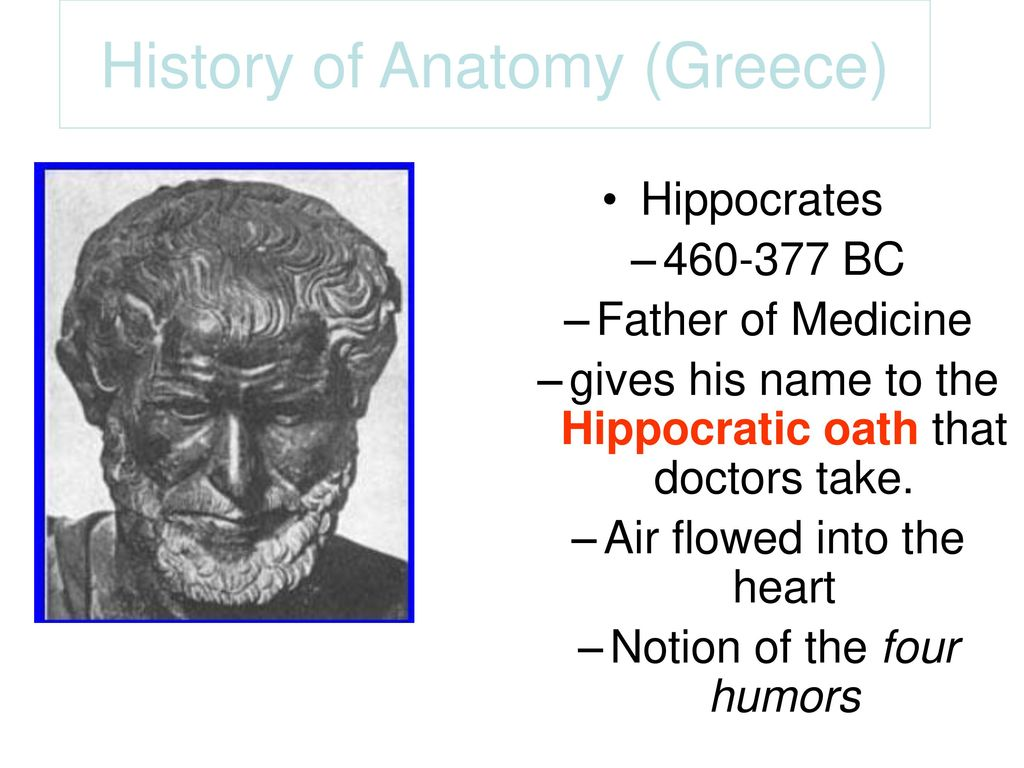 a brief history of anatomy and physiology Start studying a brief history of anatomy, physiology, & medicine learn vocabulary, terms, and more with flashcards, games, and other study tools.