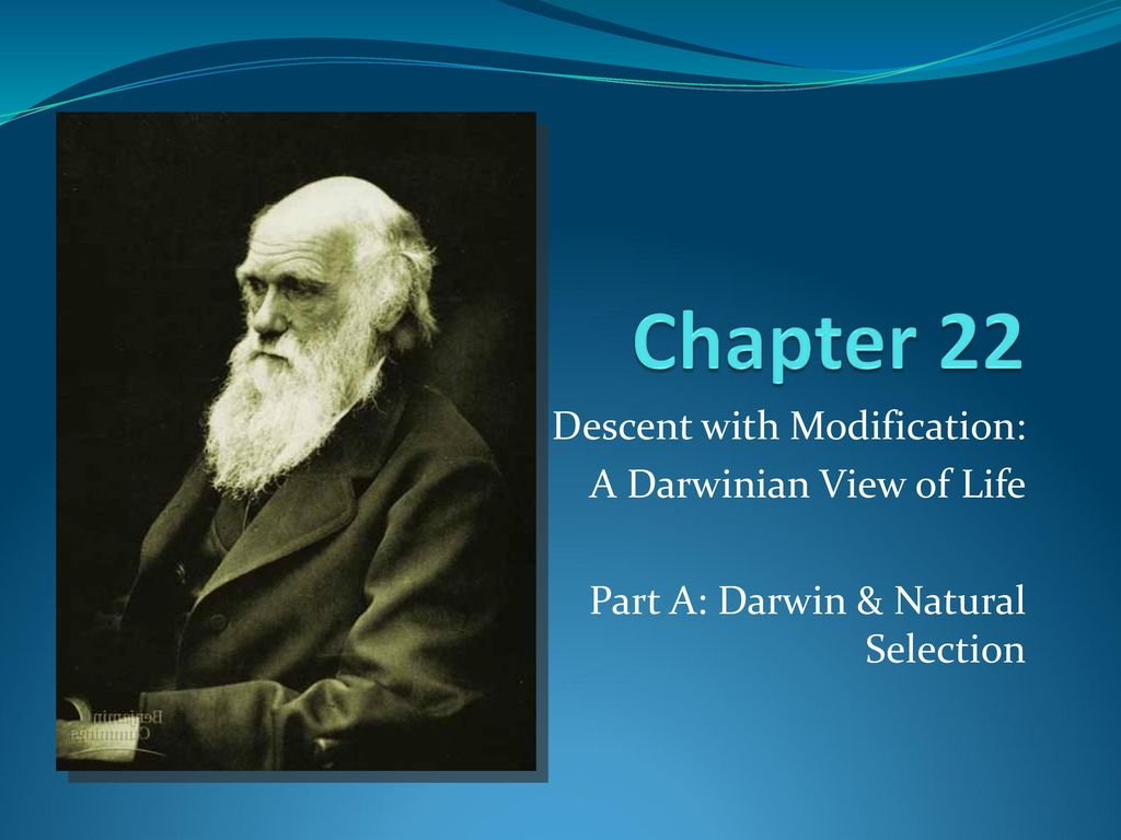chapter 22 descent with modification Chapter 22 descent with modification: darwinian view of life lecture outline  overview: darwin introduces a revolutionary theory on november 24, 1859, charles.
