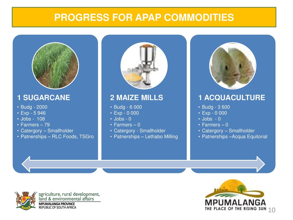 10 PROGRESS FOR APAP COMMODITIES