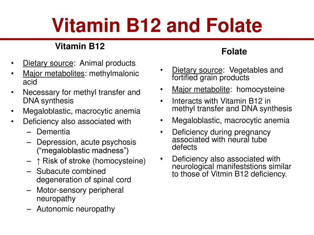 metaboliten vitamin b12