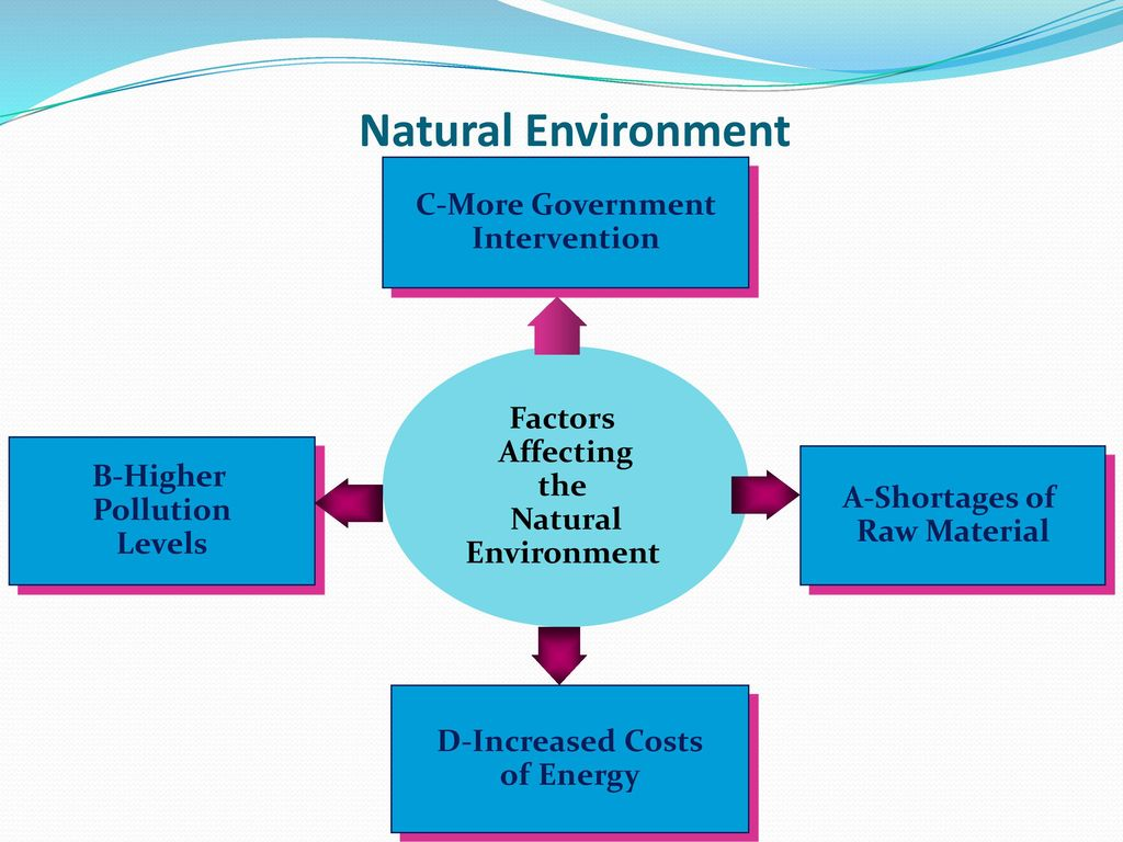 natural physical factors affecting business environment The internal business environment comprises of factors within the company which impact the success and approach of operations unlike the external environment, the company has control over these factors.