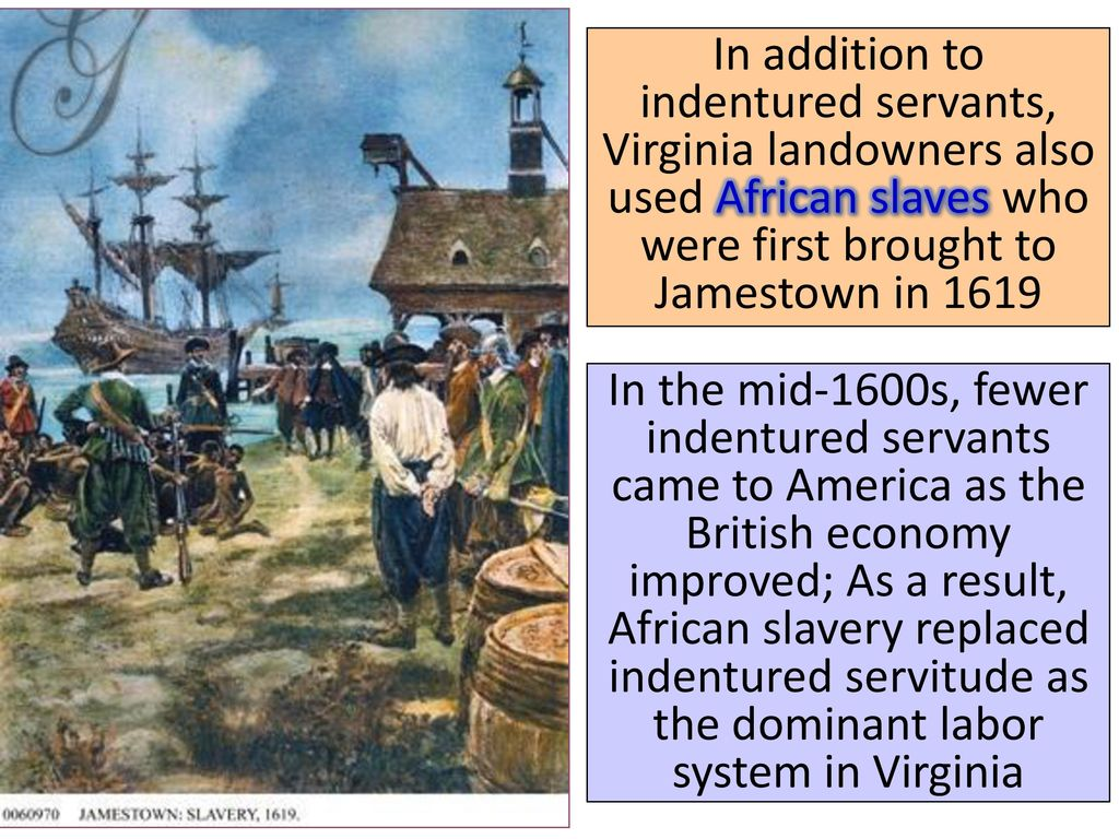 indentured servitude in virginia essay