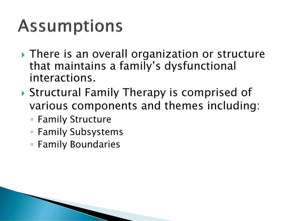 overall family structure The components of family systems theory are as follows: • have interrelated elements and structure overall family images and themes are reflected in this.