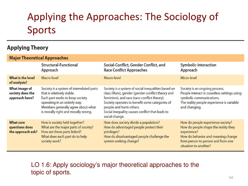 Sociology perspective and theory ppt download applying the approaches the sociology of sports biocorpaavc Image collections