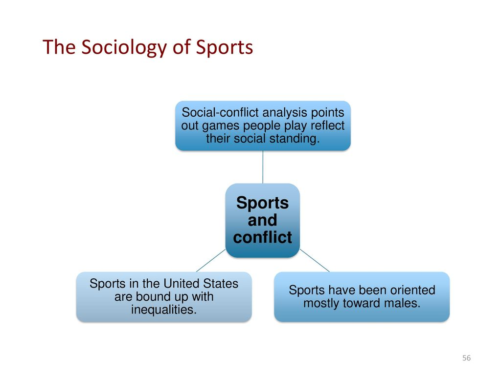 Sociology perspective and theory ppt download the sociology of sports biocorpaavc Image collections