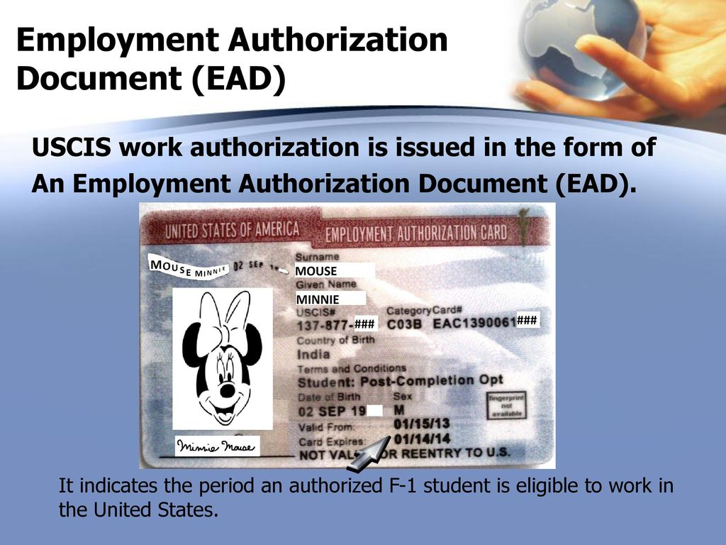 how to get work authorization in us