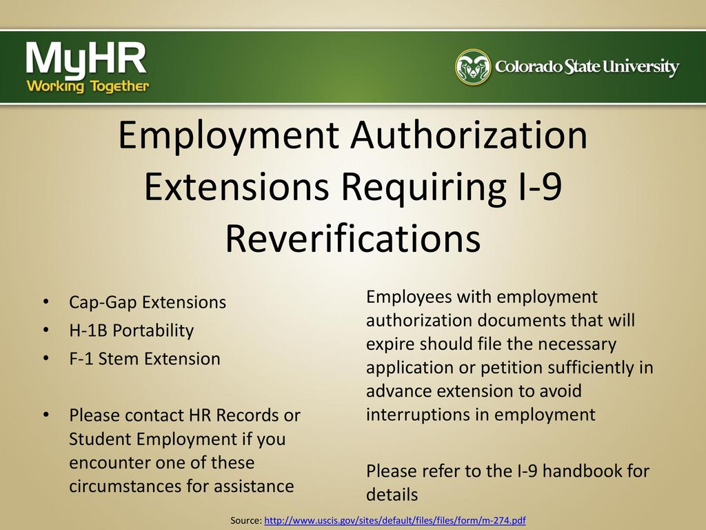 Completing the form i 9 the electronic process ppt download employment authorization extensions requiring i 9 reverifications falaconquin