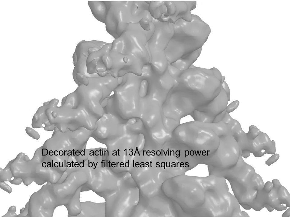 Decorated actin at 13Å resolving power calculated by filtered least squares