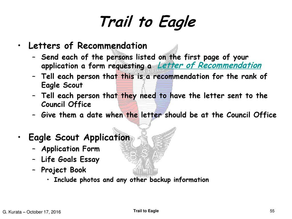 eagle scout app essay