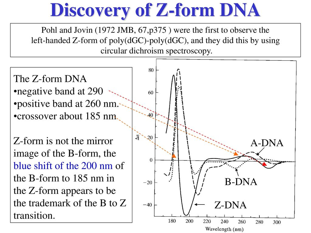 an introduction to the positive and negative effects of dna profiling Free coursework on the positive and negative effects of dna profiling from essayukcom, the uk essays company for essay, dissertation and coursework writing.