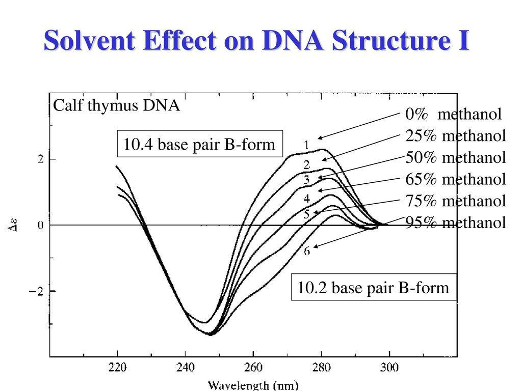 structure of dna and effect of Insertions and deletions can have drastic effects on the dna code and the final protein go to the nucleotide structure of dna & rna ch 5 enzyme function effects of frameshift mutations: definitions and examples related study materials related recently updated.