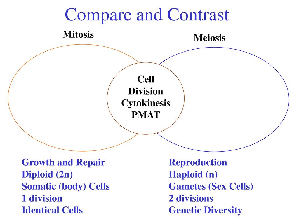 Cell division standard standard 16 heredity and reproduction ppt compare and contrast mitosis meiosis cell division cytokinesis pmat pooptronica Images