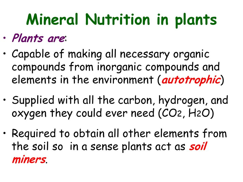 mineral requirements of plants Tables showing elements recognized as essential components of plants, animals and man this mineral can accumulate in some plant normal crop requirements.