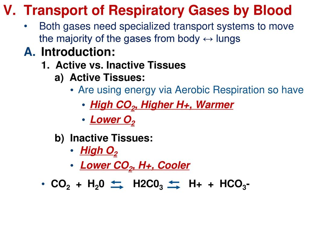 an introduction to respiratory gases Introduction to patient assessment describe the presentation of common respiratory sordesr i d laboratory studies may include arterial blood gases.