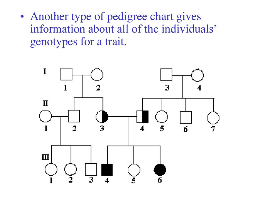 Pedigrees ppt download 8 another type of pedigree chart gives information about all of the individuals genotypes for a trait pooptronica Gallery
