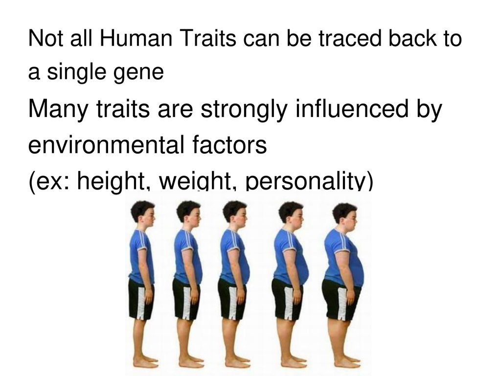 hereditay and environmental factors in human Keywords: environmental factors, cancer causing genes, human cancers introduction current biological mechanisms of cancer suggest that all cancers are originated from both environment and genetics, meaning that there are multiple external factors combined with internal genetic changes will lead to human cancers.