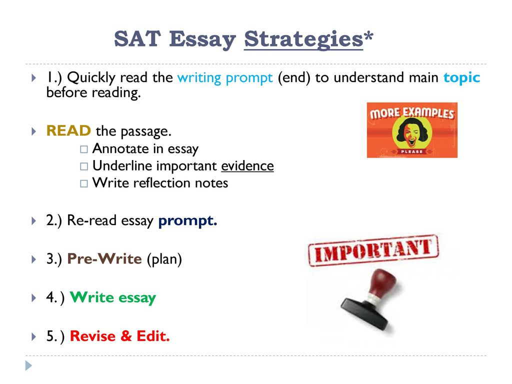 miss amorin language arts sat ppt  sat essay strategies 1 quickly the writing prompt end to