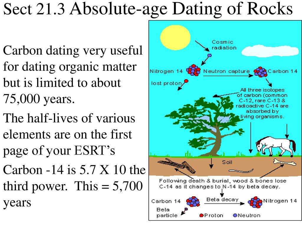 Section 21.3 Absolute Age Dating Of Rocks