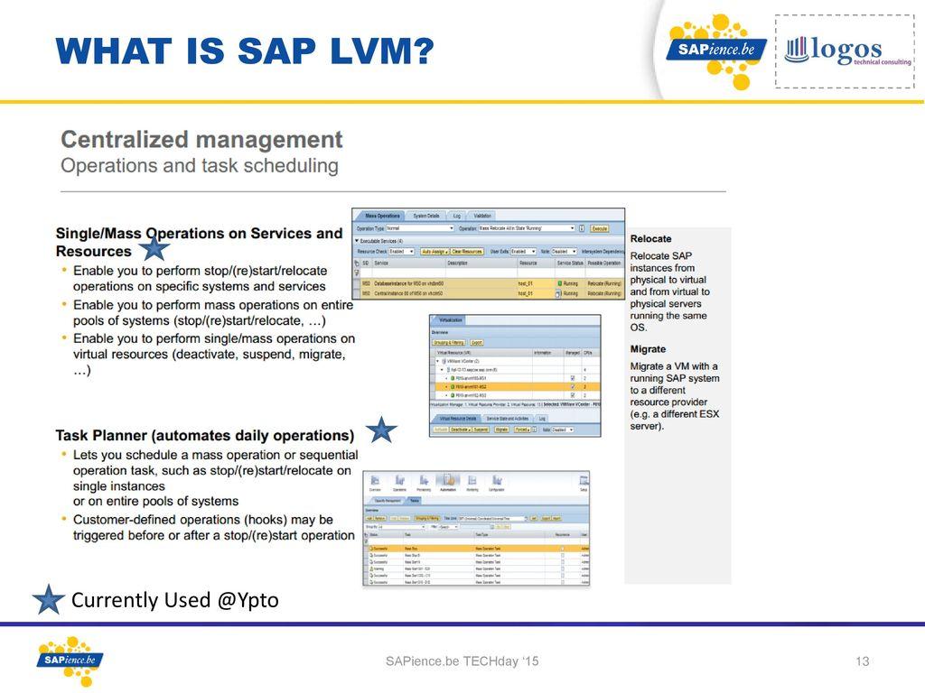 virtual system in sap
