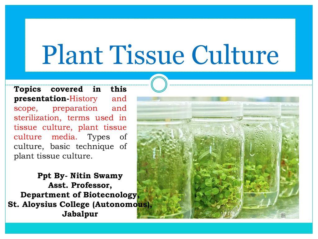 Plant tissue culture. Ppt video online download.