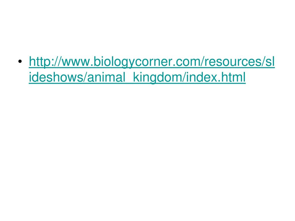 biologycorner - ppt download