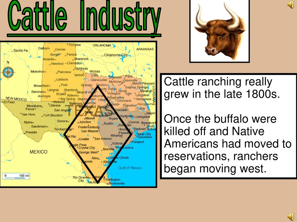 cattle industry Beef industry overview most unique and complex lifecycle of any food, includes variety of segments takes 2-3 years to bring beef from farm to fork 2016 forecasted economic impact:& $6756 billion in farm cash receipts for cattle and calves1evolution of beef industry the us beef production system used to be inefficient- cattle were moved around based on the location of grass at any given time.