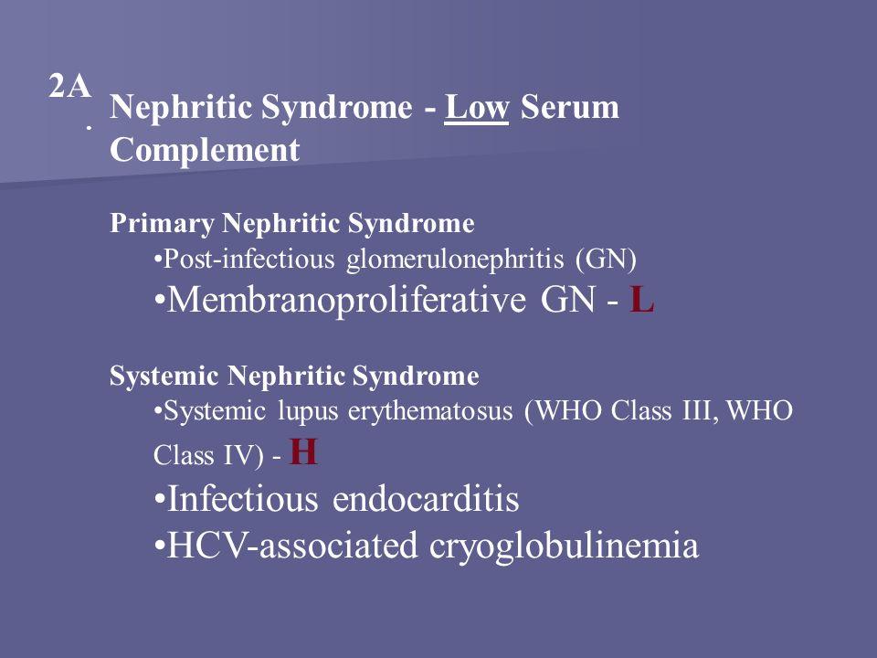 Membranoproliferative GN - L