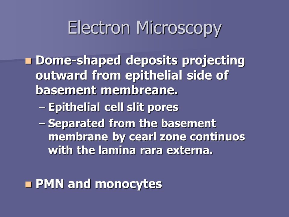 Electron Microscopy Dome-shaped deposits projecting outward from epithelial side of basement membreane.