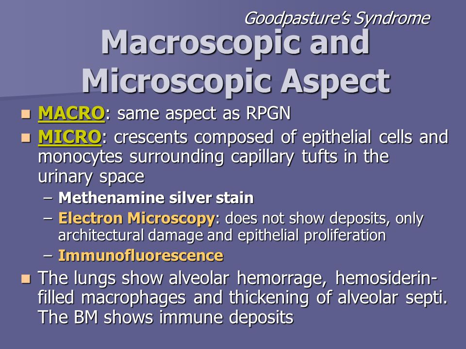 Macroscopic and Microscopic Aspect