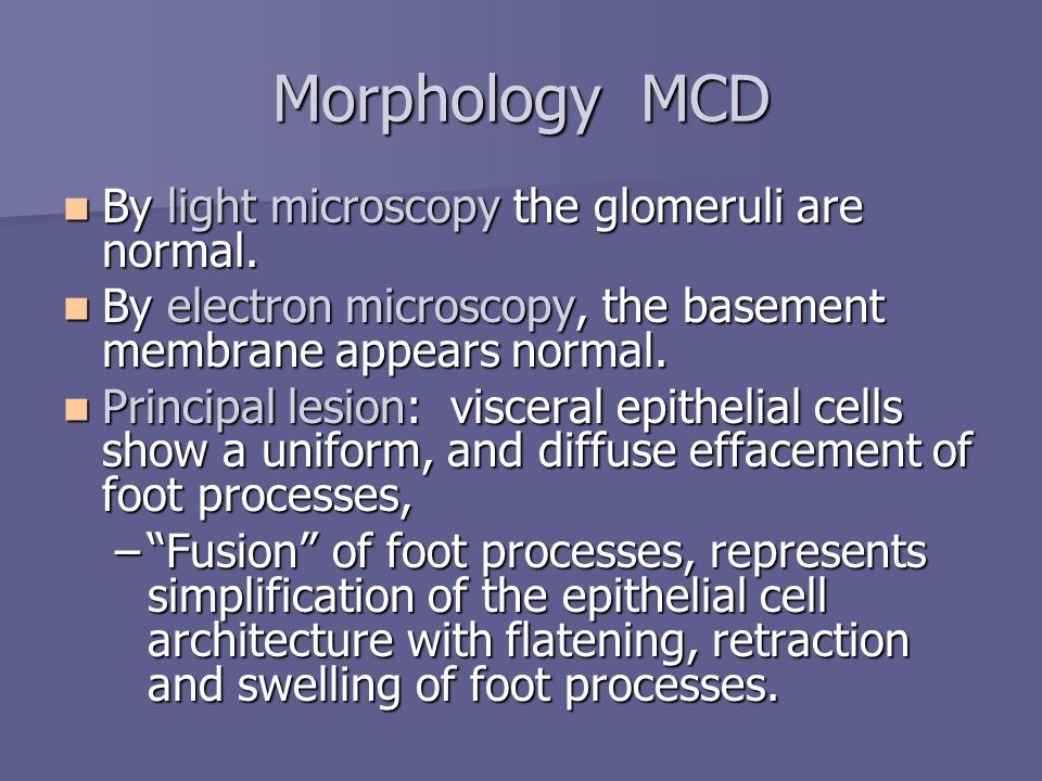 Morphology MCD By light microscopy the glomeruli are normal.