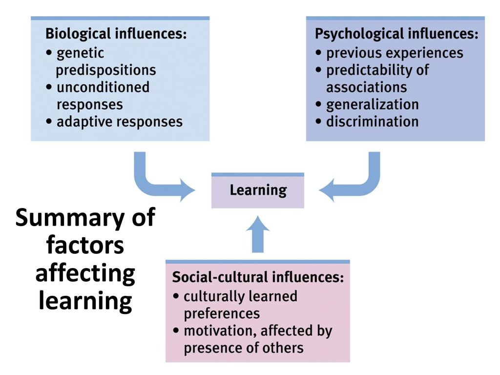 factors affecting learning Discover the internal and external factors that influence language learning and impact how  can affect how they learn a second language more introverted students .