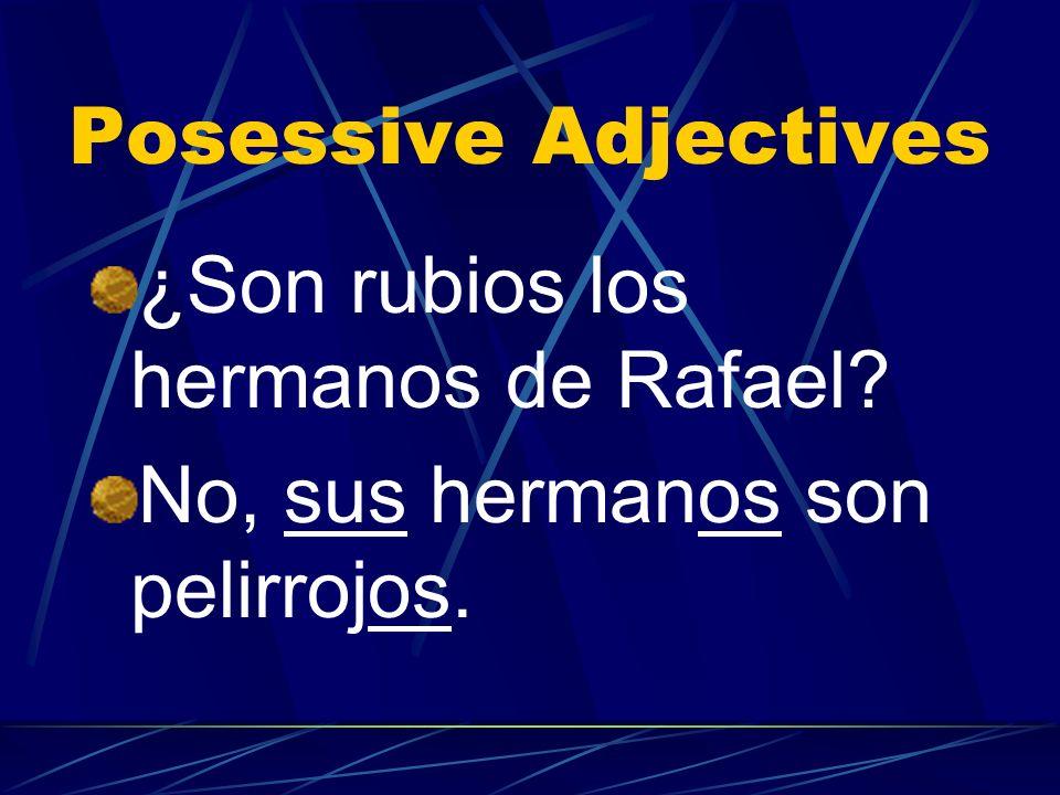 Posessive Adjectives ¿Son rubios los hermanos de Rafael No, sus hermanos son pelirrojos.