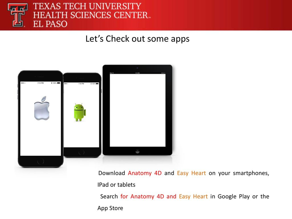 Ausgezeichnet Anatomie Apps Für Ipad Ideen - Anatomie Ideen ...