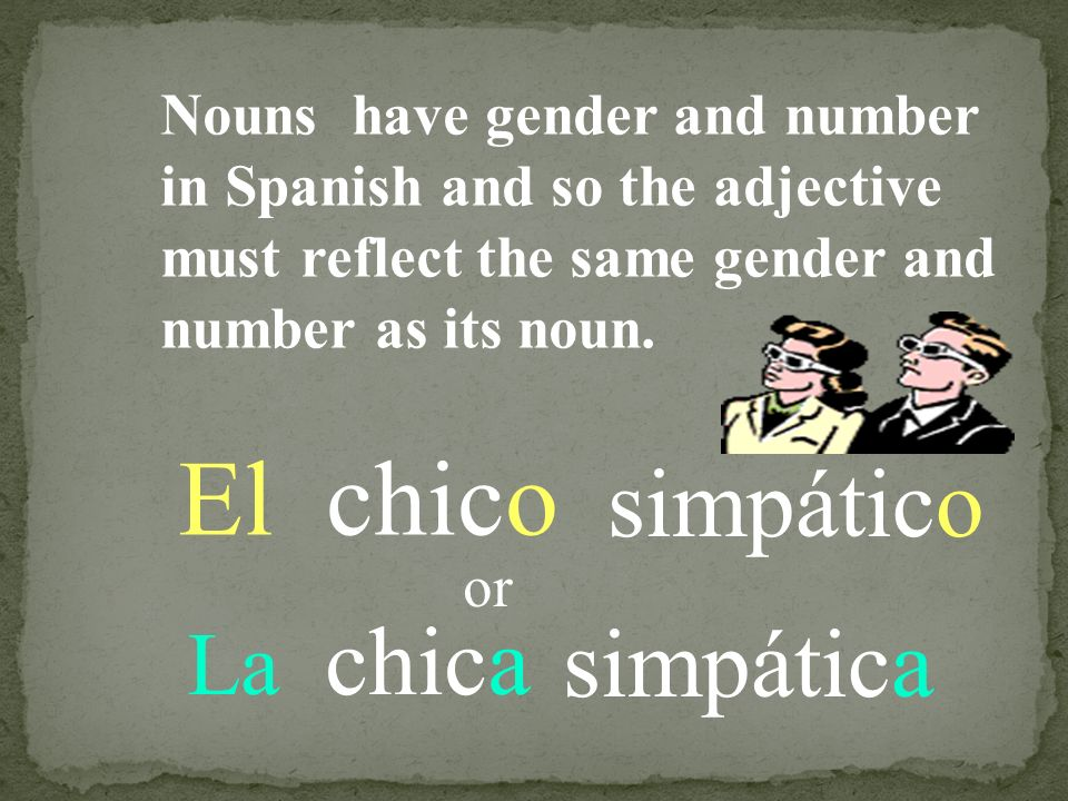 El chico simpático simpática La chica Nouns have gender and number