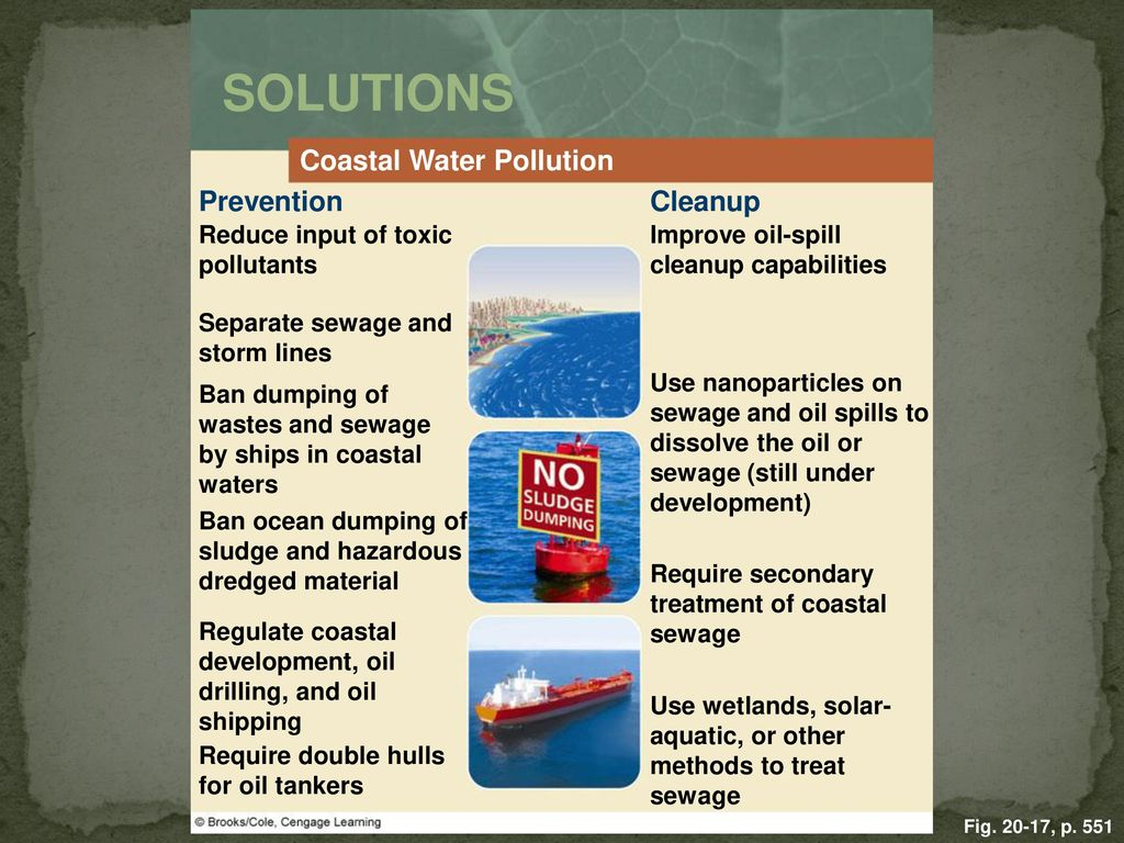 the water pollution prevention in oceanic areas Water pollution affects marine causes and effects of water pollution the warm water forces indigenous water species to seek cooler water in other areas.