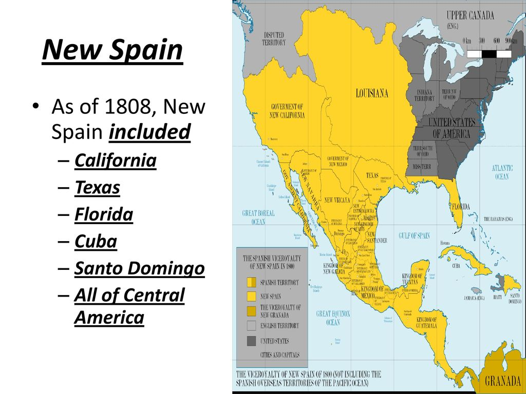 Latin American Independence s ppt download