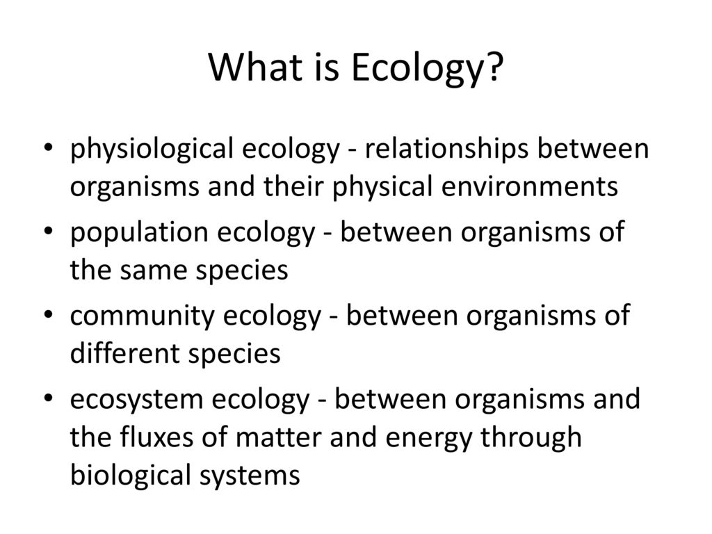 relationship between organism and environment